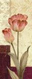 Quattro Sonata I Affiche par Pamela Gladding
