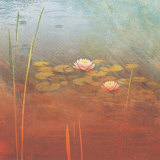 Pond Lilies II Art by Amy Melious
