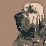 Bloodhound Affiches par Emily Burrowes