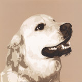 Golden Retriever Posters by Emily Burrowes