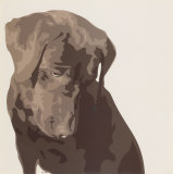 Chocolate Labrador Posters by Emily Burrowes