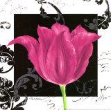 Damask Tulip IV Art by Pamela Gladding