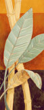 Bali Leaves I Prints by Paul Brent