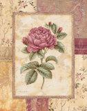 Provence Rose I Plakat af Pamela Gladding