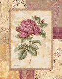 Provence Rose I Print by Pamela Gladding