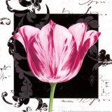 Damask Tulip I Posters par Pamela Gladding