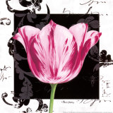 Damask Tulip I Posters by Pamela Gladding