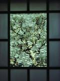 A Tree in a Courtyard Is Framed by a Window Impressão fotográfica por Sam Abell