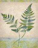Gossamer II Prints by Amelia Worrall
