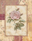 Provence Rose II Art by Pamela Gladding