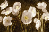 Baroque Poppies Posters by Ives Mccoll