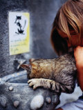 Girl Helping Cat at Cat Fountain, Positano, Campania, Italy Photographic Print by Philip & Karen Smith