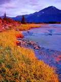 Low Tide at Turnagain Arm, Cook Inlet, Seward Scenic Highway, Seward, Alaska Photographic Print by Richard Cummins