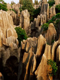 Limestone Karst Formations in Stone Forest, Shi Lin, Yunnan, China Photographic Print by Richard I'Anson