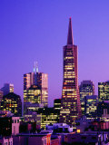Transamerica Pyramid and City Buildings, San Francisco, California Photographic Print by Richard Cummins
