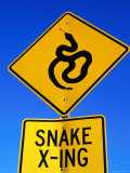 Road Sign for Snake Crossing, Carefree, Arizona Photographic Print by Philip & Karen Smith