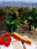 Tomatoes, Pate and Baguette Picnic in Vineyard, Epernay, Champagne-Ardenne, France Photographic Print by Oliver Strewe