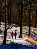 Walkers on Snow Covered Path in Woodland at Grasmere, Lake District National Park, Cumbria, England Photographic Print by David Tomlinson