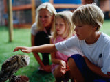 Boy Patting an Owl at the Spier Wildlife Shelter, Cape Town, Western Cape, South Africa Photographic Print by Philip & Karen Smith