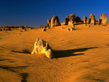 Late Afternoon Light on Limestone Pillars in Pinnacles Desert, Western Australia Photographic Print by Ross Barnett