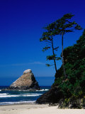 Rocky Outcrop at Heceta Head State Beach, Near Florence, Florence, Oregon Photographic Print by Richard Cummins