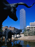 Cattle-Drive Sculptures at Pioneer Plaza, Dallas, Texas Photographic Print by Richard Cummins