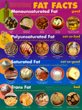 Fat Facts Affiches