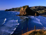 Coastline at Piha Dominated by Lion Rock, New Zealand Photographic Print by Ross Barnett