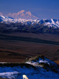 Mount Mckinley with Dall Sheep in Foreground, Denali National Park and Preserve, Alaska Photographic Print by Mark Newman