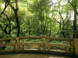 Bridge and Garden at Yoyogi-Koen, Tokyo, Kanto, Japan Photographic Print by Greg Elms