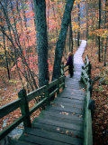 Woman Standing on Boardwalk in Johnson's Shut-Ins State Park During Autumn, Missouri Photographic Print by John Elk III