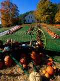 Pumpkin Patch Store, Pownal, Vermont Photographic Print by John Elk III