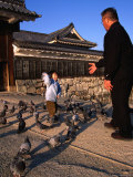 Feeding the Pigeons on the Matsomoto-Jo Causeway, Chubu, Japan Photographic Print by Dominic Bonuccelli