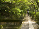 Man Walking the Path of Philosophy, Kyoto, Kinki, Japan Photographic Print by Greg Elms