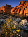 Hidden Valley, Joshua Tree National Park, California Photographic Print by John Elk III