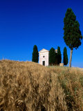 Vitaleta Chapel, So of Pienza, Val d'Orcia, Tuscany, Italy Photographic Print by John Elk III