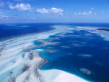 Coral Reef, Torres Strait Islands, Torres Strait Islands, Queensland, Australia Photographic Print by Oliver Strewe