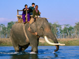 Elephant Carrying Tourists Across Ramgana River, Royal Chitwan National Park, Narayani, Nepal Photographic Print by Christer Fredriksson