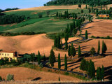 Cypress-Lined Montichiello Road, So of Pienza, Val d&#39;Orcia, Tuscany, Italy Photographic Print by John Elk III