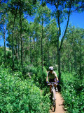 Ranger on Mountain Bike, Steamboat Springs, Colorado Photographic Print by Holger Leue