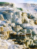 Canary Spring at Mammoth Hot Springs, Yellowstone National Park, Wyoming Photographic Print by Holger Leue