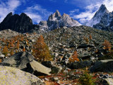 Chamonix Aiguilles and Autumn Larch Trees from Grand Balcon Nord, Chamonix, Rhone-Alpes, France Photographic Print by Glenn Van Der Knijff