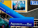 Aquarium of the Bay, Pier 39, Fisherman's Wharf, San Francisco, California Photographic Print by Richard Cummins