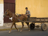 Man Riding on Horse-Drawn Cart, Granada, Nicaragua Photographic Print by Margie Politzer