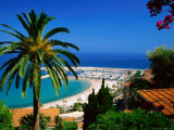 Beach and Town from Hill with Palm Tree in Foreground, Menton, Provence-Alpes-Cote d'Azur, France Photographic Print by David Tomlinson