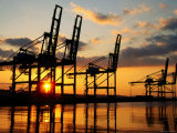 Harbour Cranes, Tacoma, Washington Photographic Print by John Elk III