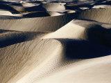 Coastal Sand Dunes, Dunas de Soledad, Guerrero Negro, Baja California Sur, Mexico Photographic Print by Brent Winebrenner