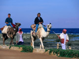 Bedouins Lead Tourists on Camels, Dahab, Egypt Photographic Print by John Elk III
