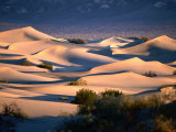 Stovepipe Wells Dunes, Death Valley National Park, California Fotografiskt tryck av Mark Newman