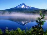 Trilium Lake with Mt. Hood in Background, Mt. Hood, Oregon Fotografisk tryk af John Elk III